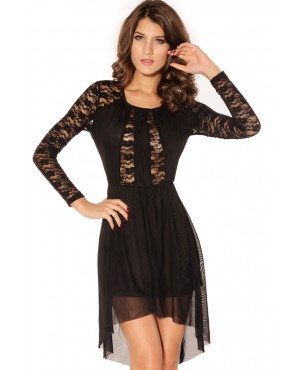 Crew Neck Sheer Lace Top Dress