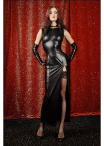 Attractive Evening Dress with Matching Gloves