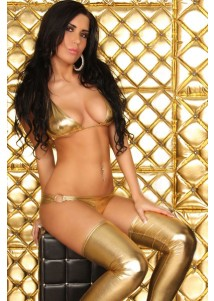 Seductive 2PC Gold Metallic Lustre Bra Set